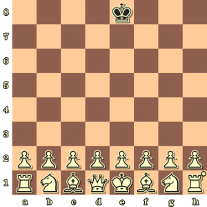chess-variant-one-army-vs-one-king